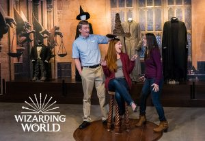 Wizarding World: Sorting Hat